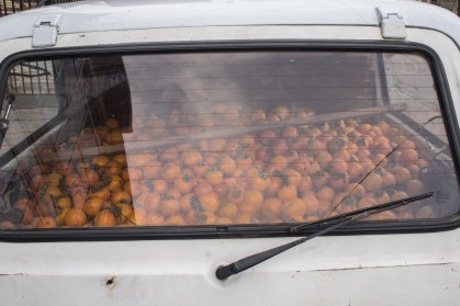 There are oranges and Ladas everywhere in Georgia. Sometimes there are oranges in Ladas