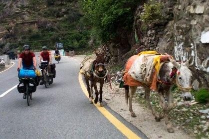 Pakistan-104