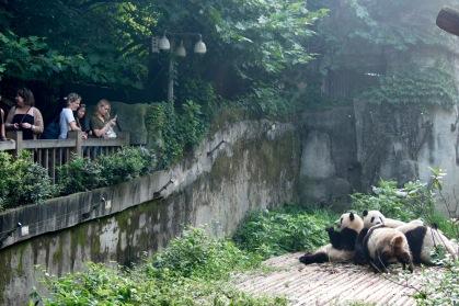 China-Sichuan-48